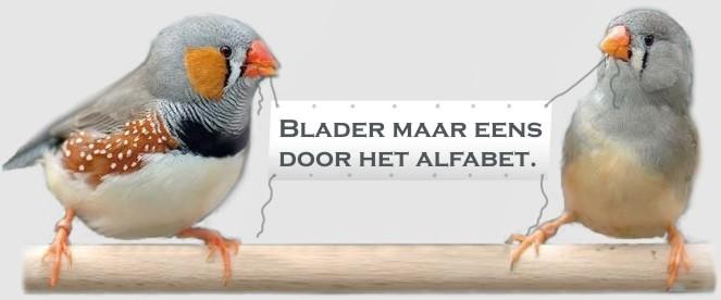 Voliere vogelsoorten