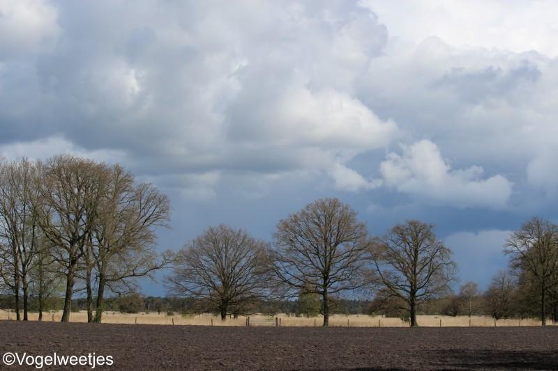 Wandelroute Boxtel Kampina Route Noord Brabant